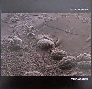 Tardigrades - Ahead / Astern - Sa Scena Sarda - 2019