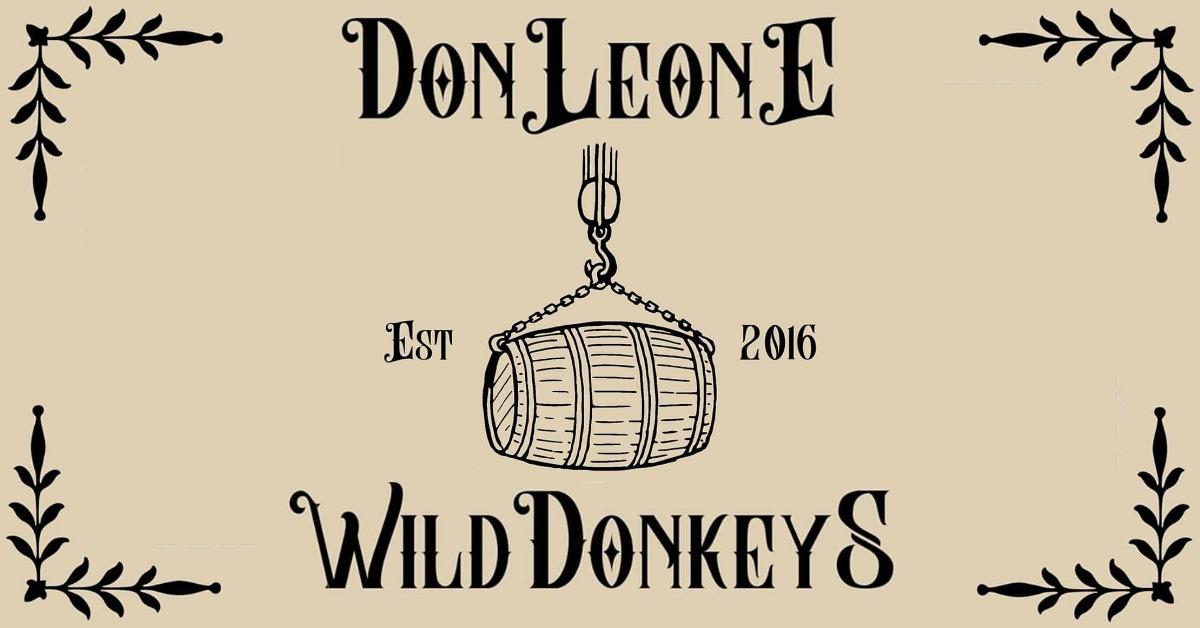 Don Leone - Wild Donkeys - YouTube - singolo - notizie - esclusiva - 2020 - Sa Scena Sarda